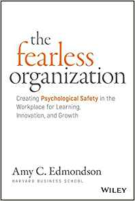 The fearless learning organization:  book cover