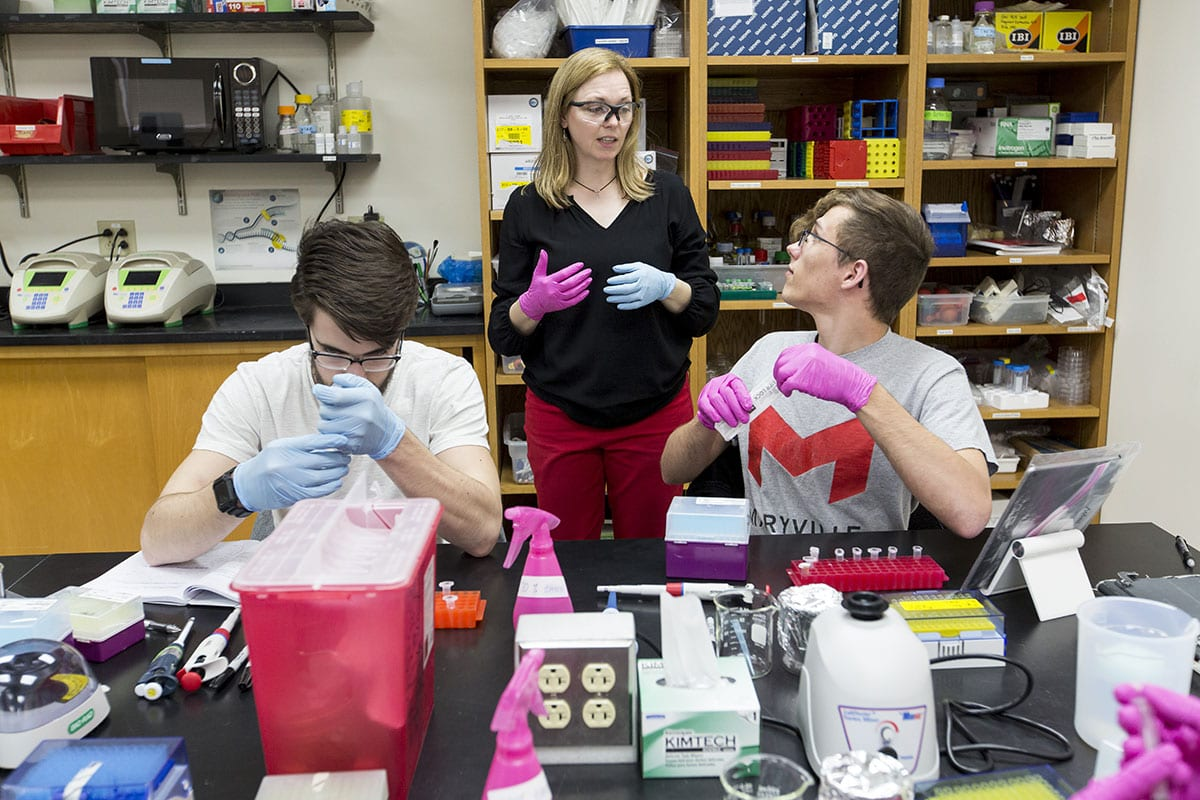 Associate Professor Stacy Donovan helps students in a biology lab at Maryville University