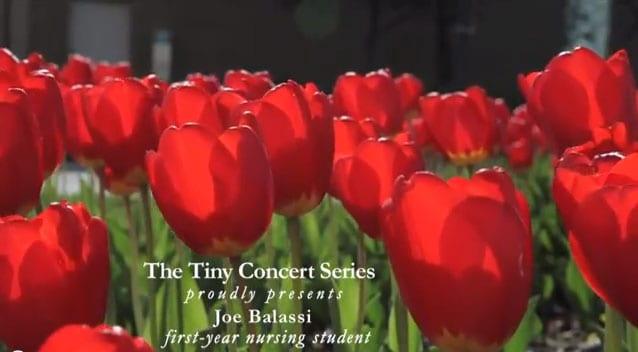 Tiny Concert Series - Joe Balassi