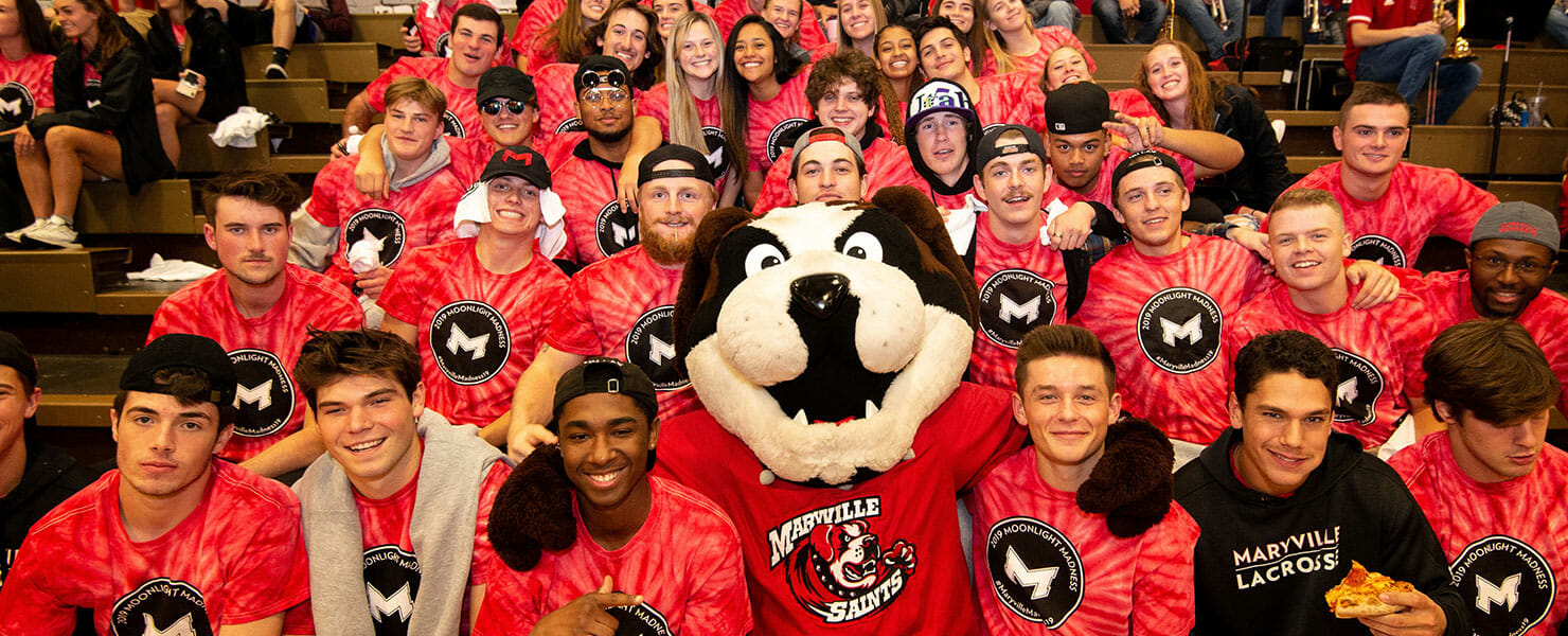 students watching basketball game at Maryville